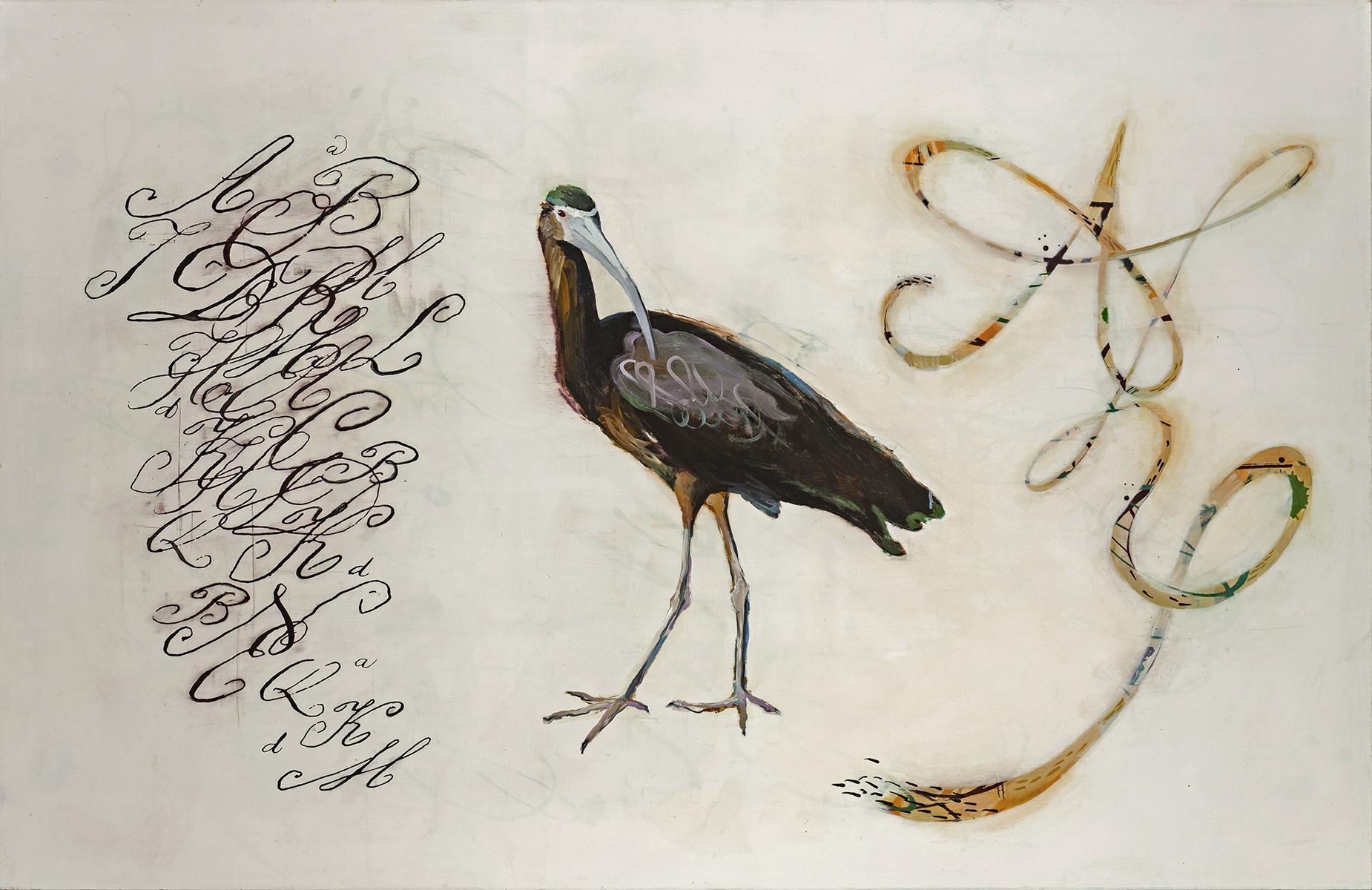 Specimens (with Ibis)